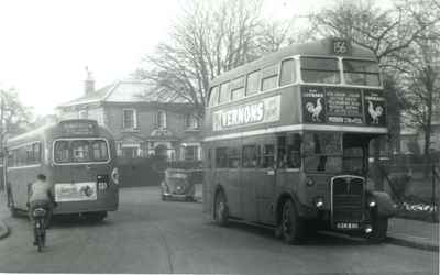 Sutton Green, 1954
